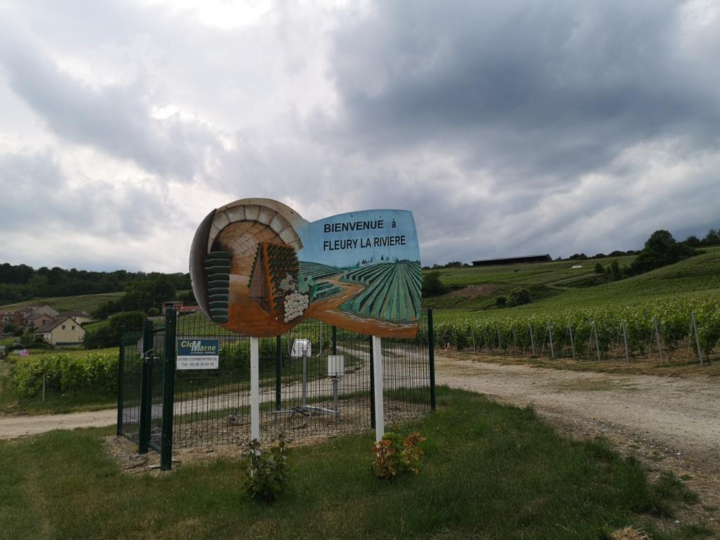 Landschaft-Champagne-mit-Ruettelpult-Schild