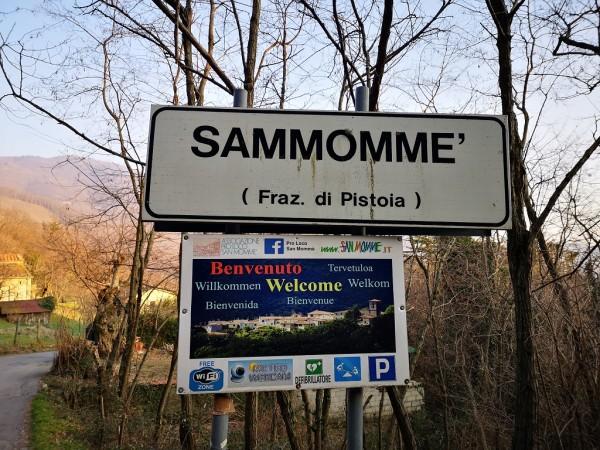 San-Momme-2019